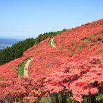 奈良駅から、葛城山へのアクセス おすすめの行き方を紹介します