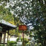 奈良駅から、円覚寺へのアクセス おすすめの行き方を紹介します