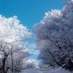 四日市駅から、御在所岳樹氷へのアクセス おすすめの行き方を紹介します