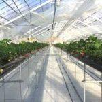 四日市駅から、いのさん農園へのアクセス おすすめの行き方を紹介します