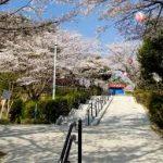 四日市駅から、津偕楽公園へのアクセス おすすめの行き方を紹介します
