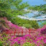 大阪駅から、あたご山公園へのアクセス おすすめの行き方を紹介します