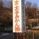 大阪駅から、上の太子観光みかん園へのアクセス おすすめの行き方を紹介します